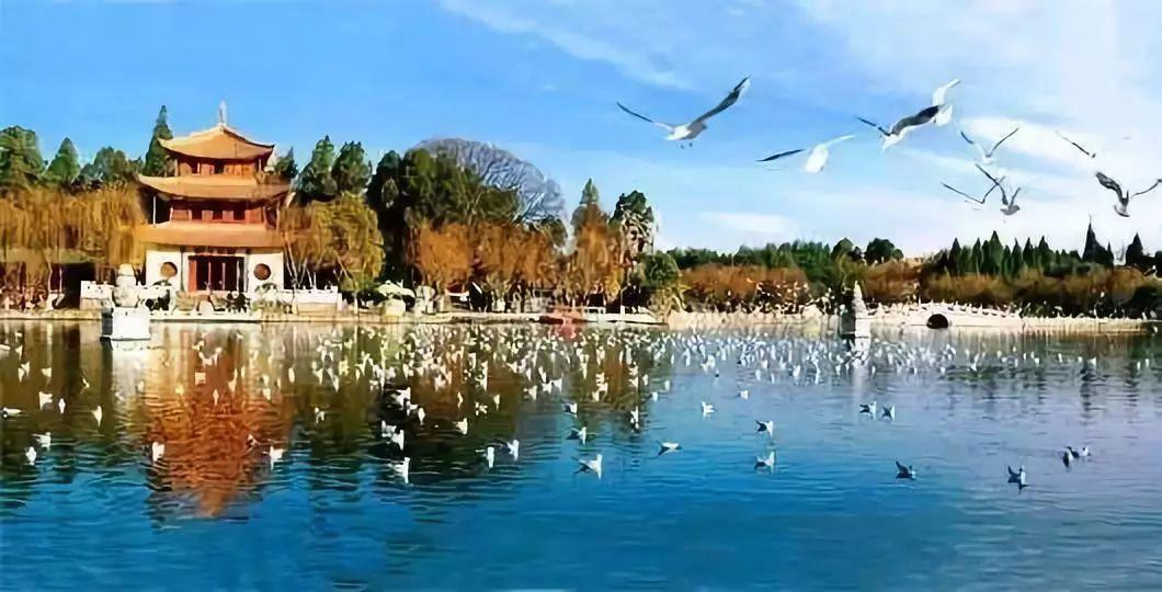 西华公园,黑龙潭公园,昙华寺公园,郊野公园,翠湖公园,西山风景名胜区