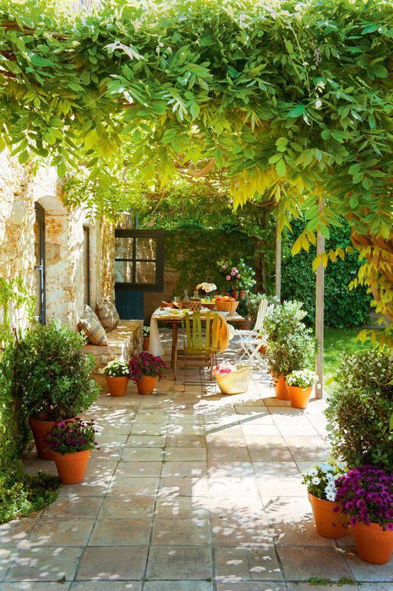 想要一个小院子,花开花落一辈子