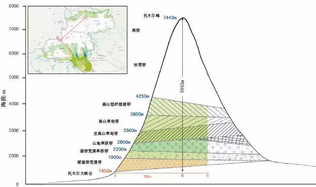 新疆天山拥有温带干旱区典型的山地垂直自然带谱,反映了温带干旱区