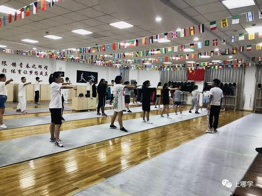 上海小学生在学的10类高大上小学课程!这几数学特色谁到家看先图片
