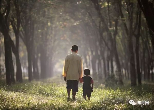 莫道桑榆晚,为霞尚满天--记爷爷、爸爸的退休生