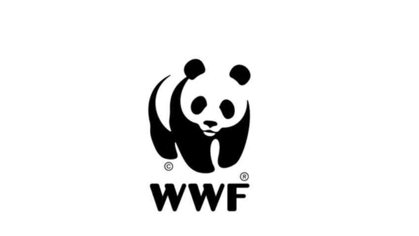 全球最大的动物保护组织——世界自然基金会把大熊猫形象做为它们的