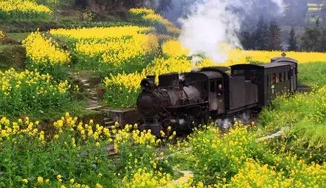海沧曾有一列开往春天的蒸汽火车,你信不信?