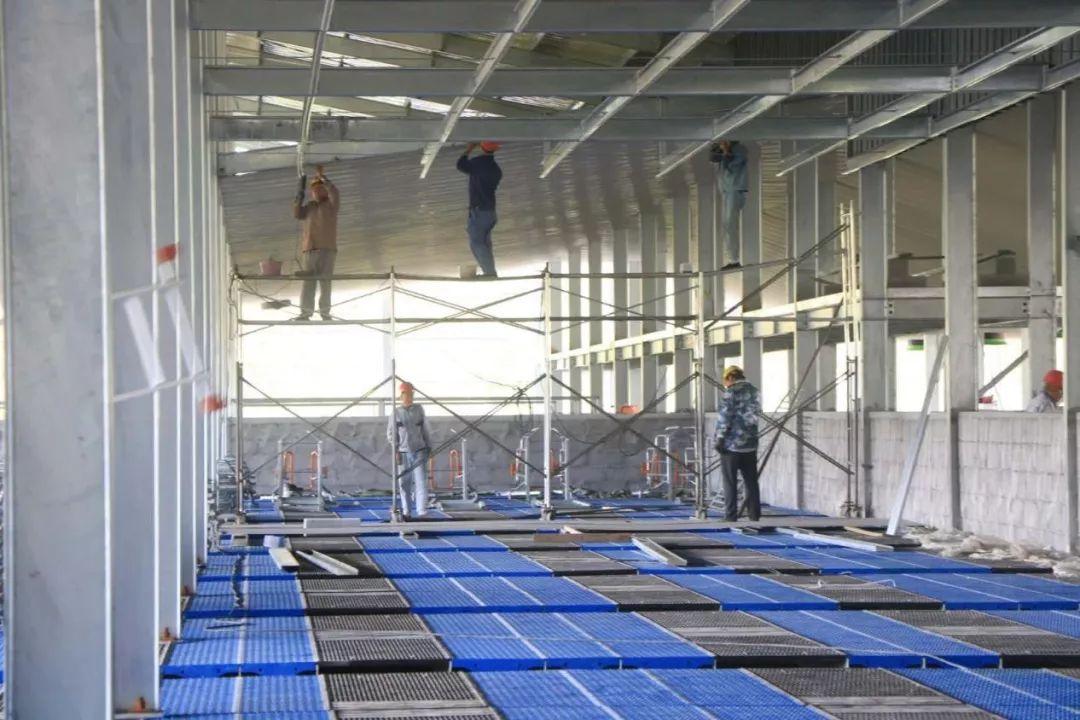 8万m/h/台);全密闭保温隔热猪舍,屋面两层复合板隔热,墙面板3层复合板