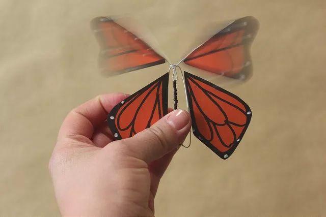 1 制作蝴蝶的身体.