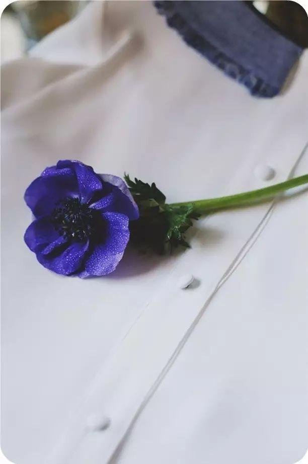 如果一个人不爱你,任何借口都能成为离开的理由 - 后花园网文 - 精美网文
