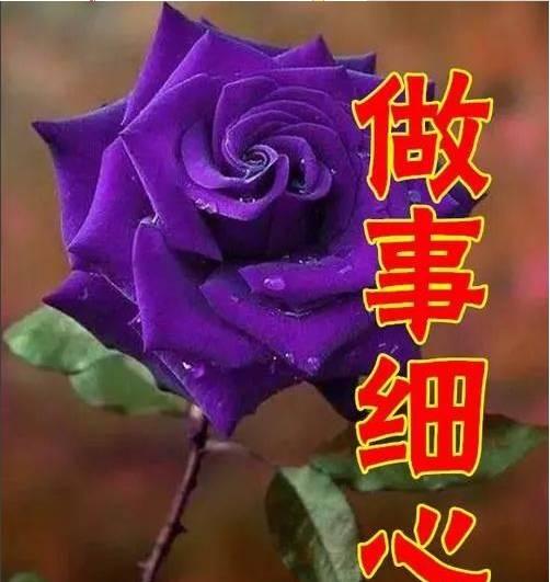 今天9月3,女人节,最美祝福送给天下所有女人,都看看!