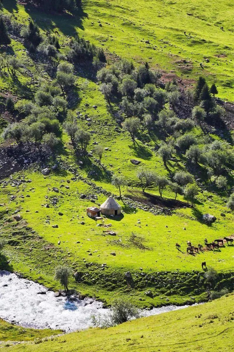 乔尔玛,这里是一片净土,冰川,湖泊,草原,河流散落在周围,美丽异常.