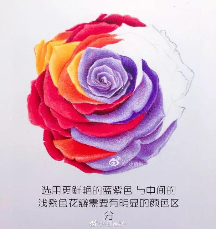 彩铅步骤临摹 | 七彩玫瑰花教程