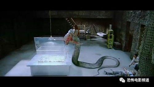 今日v传说丨《欲蛇》传说中的性感美女蛇阳阳性感女帝女神图片
