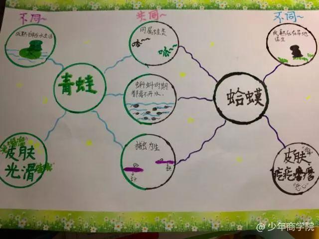 一张超简单的思维导图,让孩子变 被动学习 为 主动探索