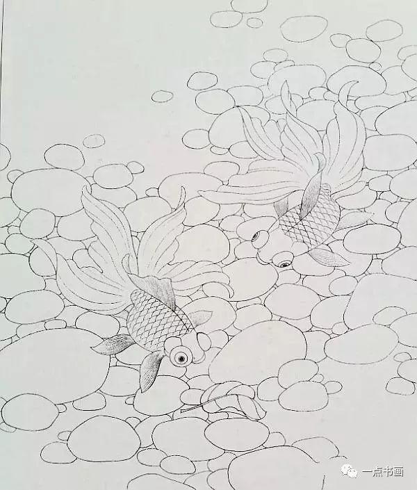 路雨年《黑龙睛金鱼》步骤画法