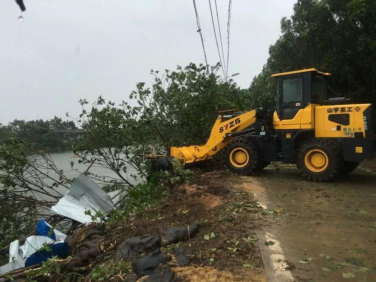 白云区城管局有关工作人员将树木清走.