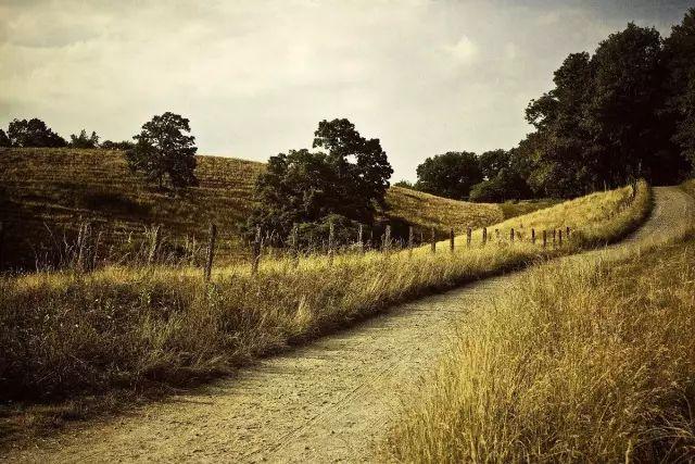 燕行论:田园综合体有望成为县域经济增长新动力