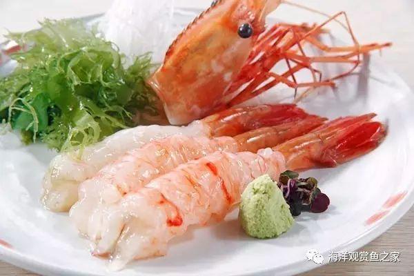 纵横虾海30年整理出来的!形状、基围虾、南猪肉瘤有什么对虾