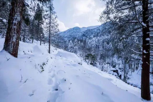 湿冷过后,你期待的雪会来吗?